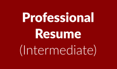 Professional resume: intermediate