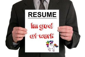 resume needs professional resume writer help